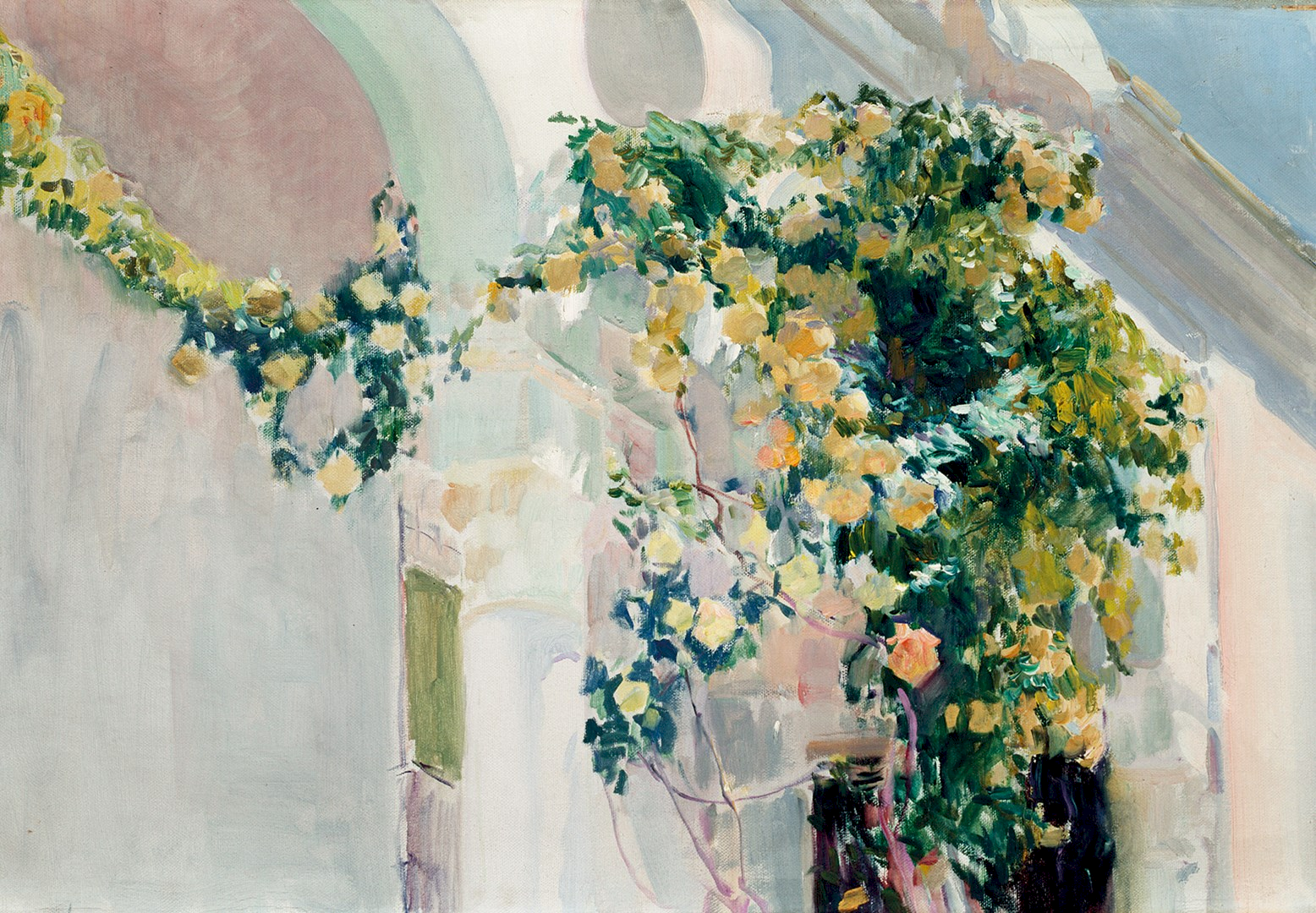 A Rose Bush at Sorolla's House